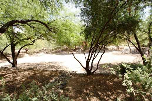 5051 N Sabino Canyon Road #1205 - Photo 13