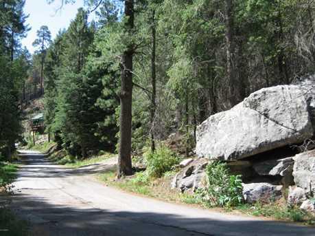 11081 Turkey Run Road - Photo 13