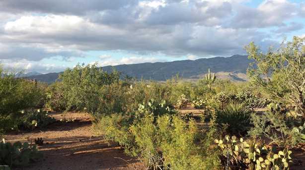 14776 Circle M Ranch #353 - Photo 7