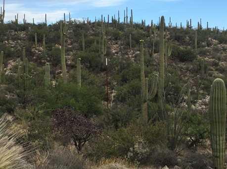 3060 Placita De Nazca - Photo 5