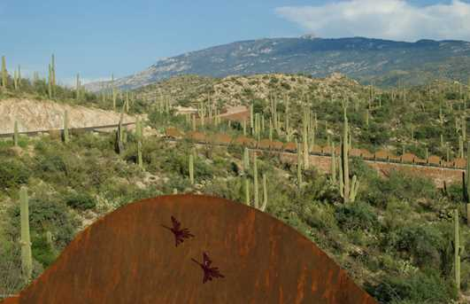 3051 Placita De Nazca - Photo 17