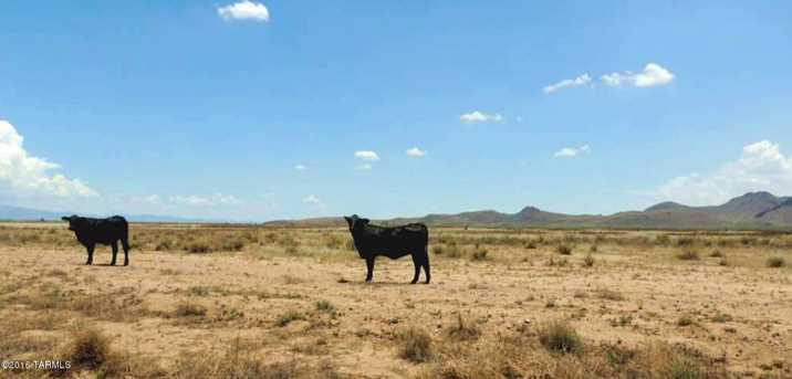 800 Ac Off Kansas Settlement Rd - Photo 5