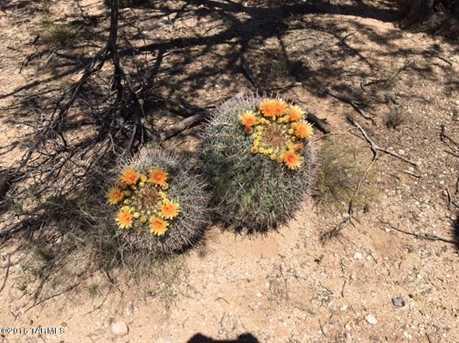 11745A Rancho Los Rios Drive - Photo 7