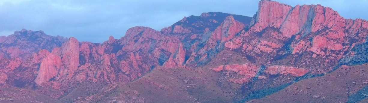11115 Desert Whisper Way #2 - Photo 7