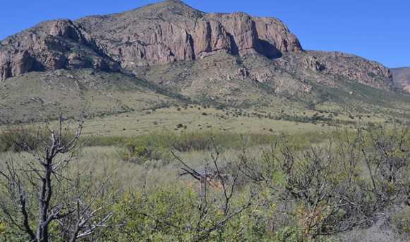 Tbd Sulphur Canyon Road #22 - Photo 8