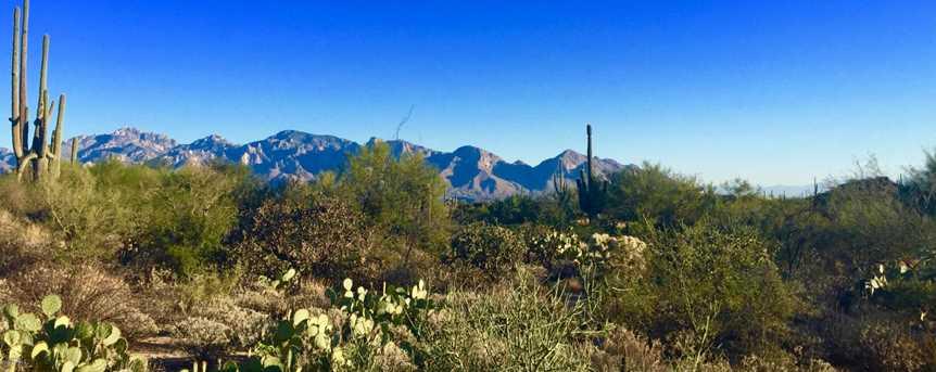 1138 Tortolita Mountain Circle #234 - Photo 1