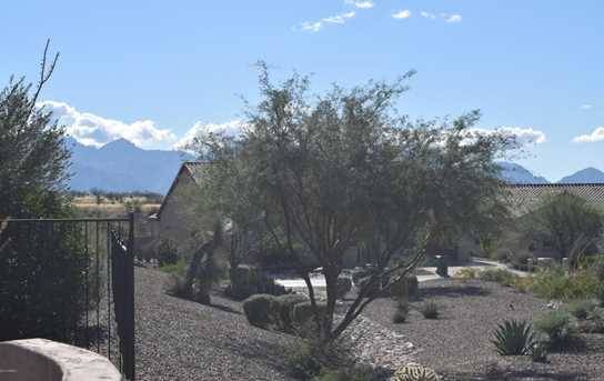 32414 S Desert Pupfish Drive - Photo 27