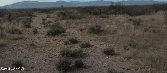 53.33 Acre Central Highway - Photo 3