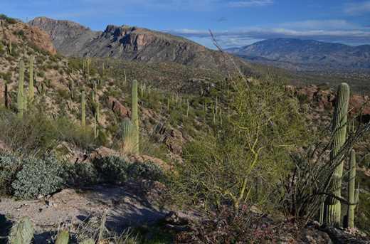 7292 Stone Canyon Dr - Photo 5