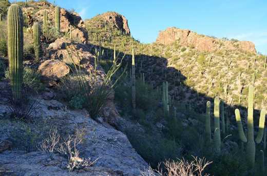 7292 Stone Canyon Dr - Photo 19