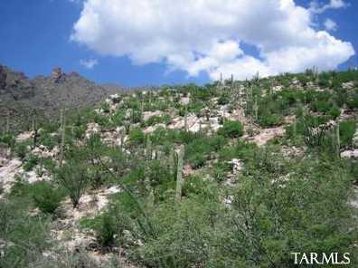 7342 Secret Canyon Drive #17 - Photo 3
