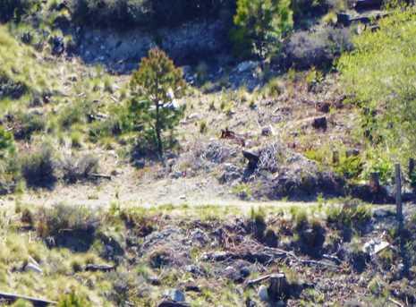 11146 Upper Goat Hill Rd #17 - Photo 3