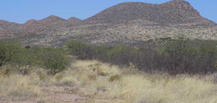 Tbd Camino Cocinero/Tubac Canyon - Photo 3