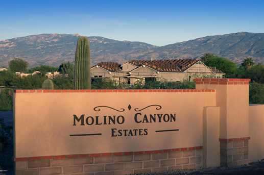 3558 N Molino Canyon Place - Photo 3
