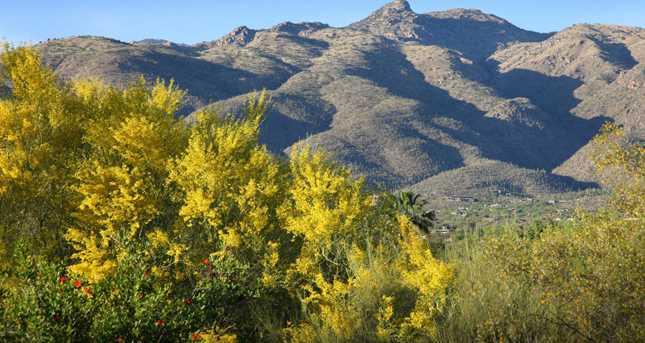3558 N Molino Canyon Place - Photo 7