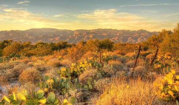 10660 E Old Spanish Trail - Photo 26