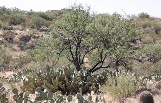 4245 Saguaro Monument Place #14 - Photo 18