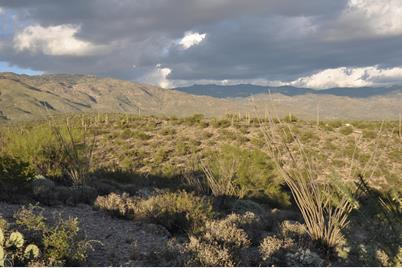 Rincon Creek Ranch Road - Photo 1