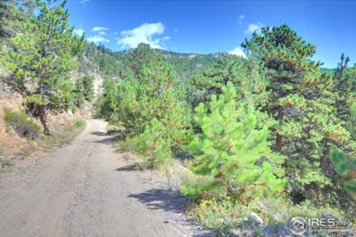 0 Pine Tree Dr - Photo 5