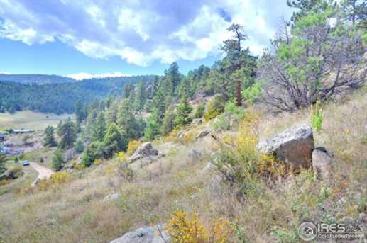 0 Pine Tree Dr - Photo 4