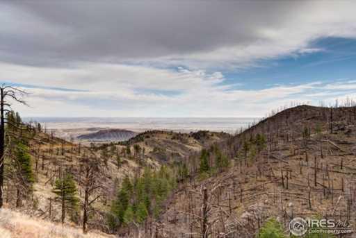 33 Hernia Hill Trail - Photo 5