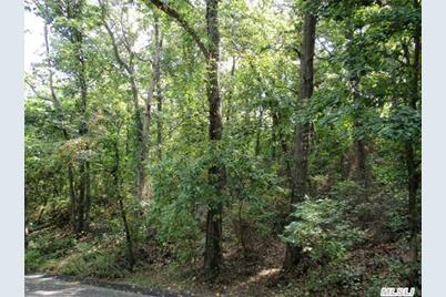 Forest/Emerson Road - Photo 1