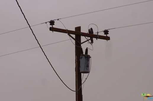 0 Pole Line Rd - Photo 9