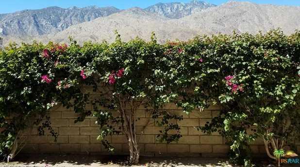 1655 E Palm Canyon Dr #317 - Photo 1