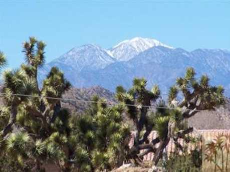 8848 Catalina Way - Photo 5