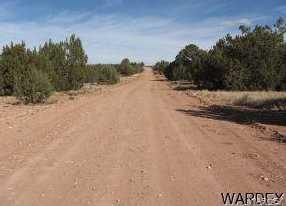54374 N Castano Road - Photo 5