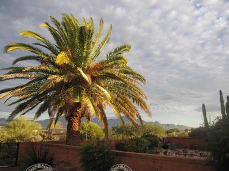 919 S Los Zafiros - Photo 41
