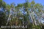 Tbd Siems (L7B3) Lane NE - Photo 7