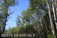 Tbd Siems (L7B3) Lane NE - Photo 9