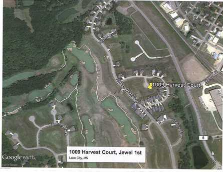1009 Harvest Court - Photo 3