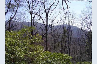 4442 Bee Tree Ridge Drive - Photo 1
