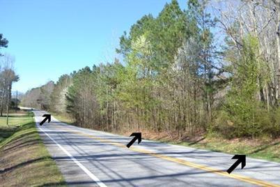 4251 Highway 5 - Photo 1