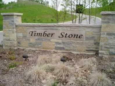 Lt15 Timber Stone Subdivision - Photo 1