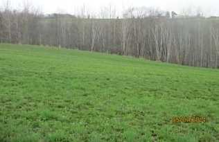 Lot 2  Sunset Ln - Photo 1