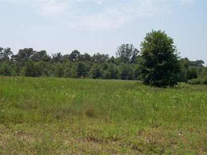 0 Lakewinds Lot#13 Boulevard - Photo 1
