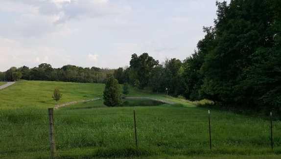 13604 Beatty Ridge Rd - Photo 3