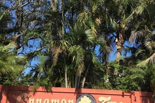 4115 NW Cinnamon Tree Circle - Photo 1