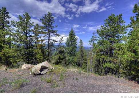 10156 Horizon View Drive - Photo 6