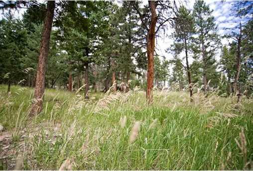 6543 Little Cub Creek Road - Photo 7