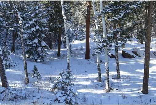 6543 Little Cub Creek Road - Photo 9