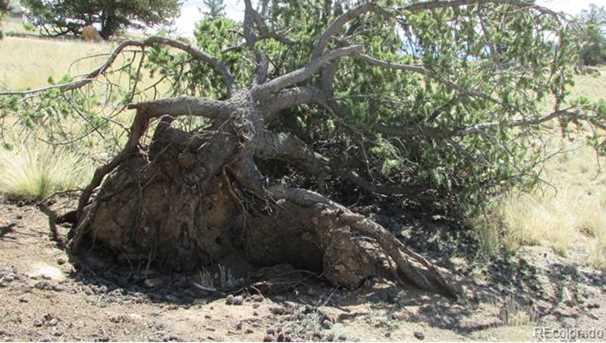 593 Chief Trail - Photo 25