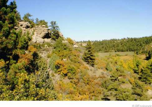 6585 Lost Canyon Ranch Road - Photo 31
