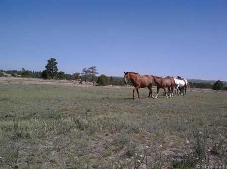 6585 Lost Canyon Ranch Road - Photo 13