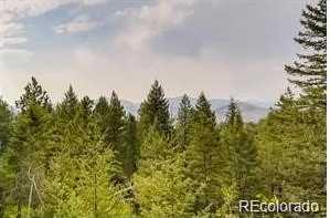 23068 Pinecrest Road - Photo 1