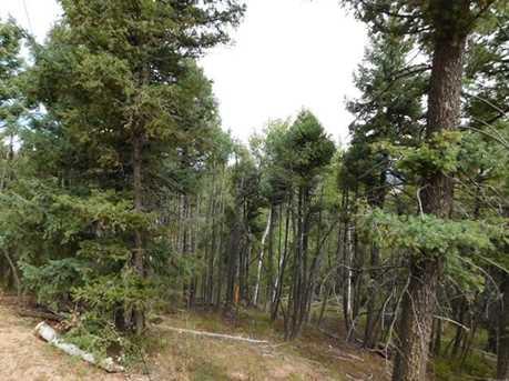 13670 Spruce Creek Circle - Photo 3