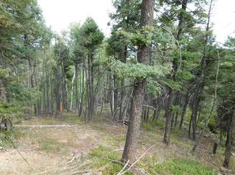 13670 Spruce Creek Circle - Photo 1